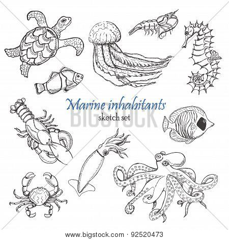 Vector collection of sea inhabitants in sketch style
