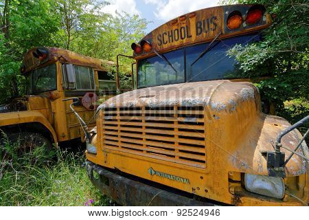 School bus cemetery on a Mississippi road