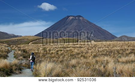 Young Women is trekking at Tongariro National Park (New Zealand)