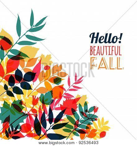 Autumn Illustration Of Leaves.