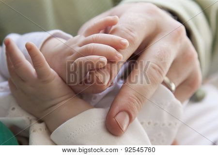 Close up of a newborn baby's hand clutching his fathers fingers.