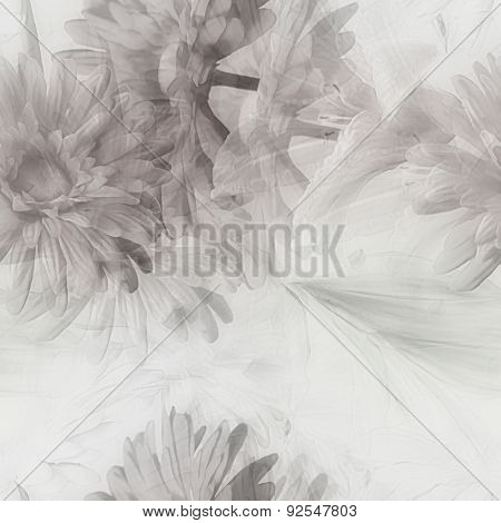 art monochrome watercolor blurred vintage floral seamless pattern with white and grey gerberas and lilies isolated on white  background. Double Exposure effect