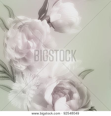 art monochrome vintage watercolor blurred floral pattern with green and white peonies and gerbera isolated on light grey green background with space for text