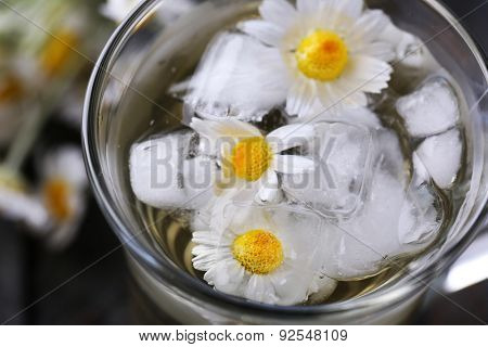 Glass of cold chamomile tea with ice cubes and chamomile flowers, close-up