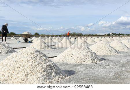 Pile Of Salt In The Salt Pan In Thailand