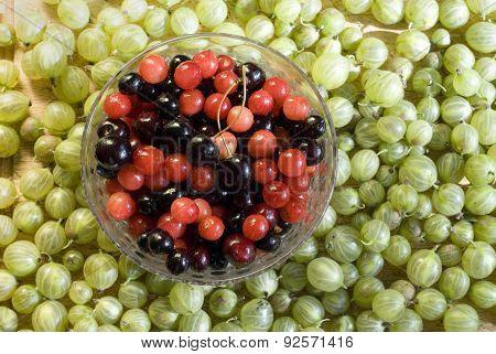 Cherries & Gooseberries
