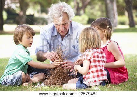 Grandfather Teaching Grandchildren To Build Camp Fire