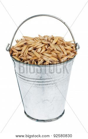 Bucket With  Oats