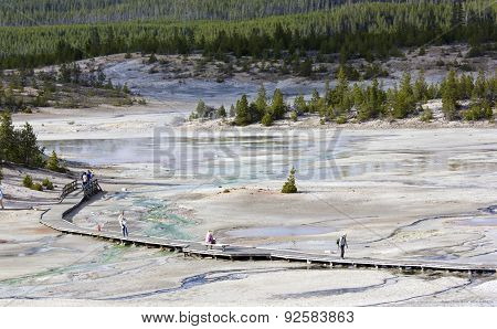 Geyser, Hot Springs at Yellowstone