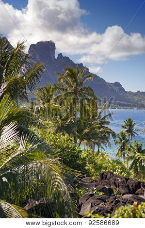 View of the Otemanu mountain through the palms and ocean. Bora-Bora. Polynesia