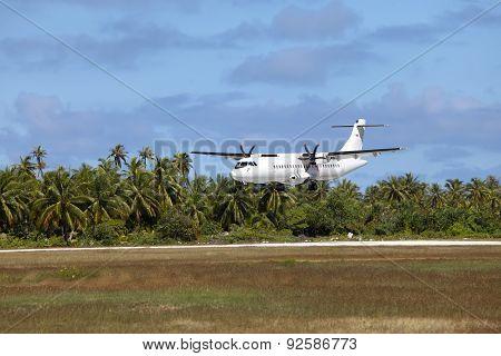 Airplane landing on a landing band among palm trees