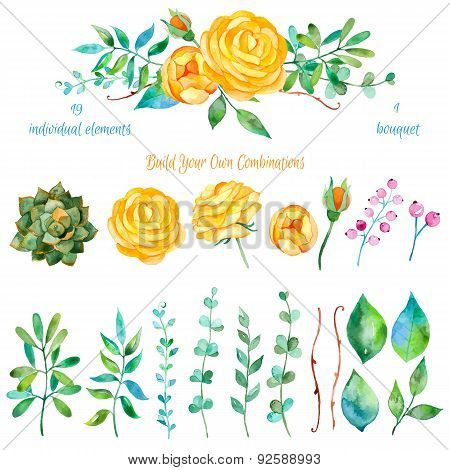 Vector floral set.Colorful floral collection with leaves and flowers drawing watercolor.