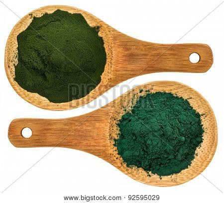 chlorella ans spirulina supplemt powder - top view of isolated wooden spoons