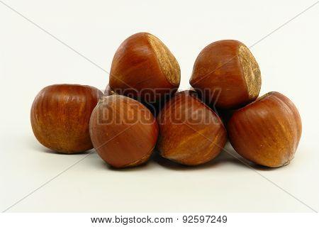 Hazelnuts On White Background