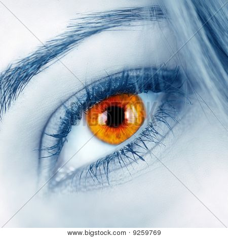 Beautiful Shape Of Female Eye