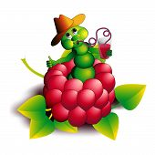 picture of caterpillar  - The caterpillar in raspberry eats berries humour - JPG