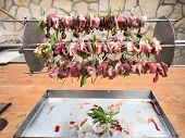 stock photo of spit-roast  - birds on the spit with meat - JPG