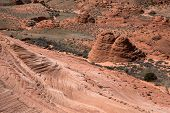 stock photo of wilder  - Edmaiers Secret are fields of socalled Brainrocks they are located at Vermilion Cliffs Wilderness Utah USA - JPG