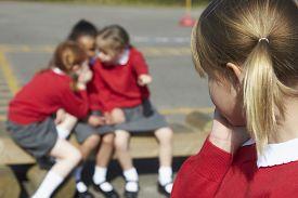 image of playground school  - Female Elementary School Pupils Whispering In Playground - JPG