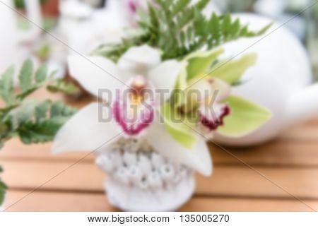 Defocused Background Of Beautiful White Phalaenopsis Orchids
