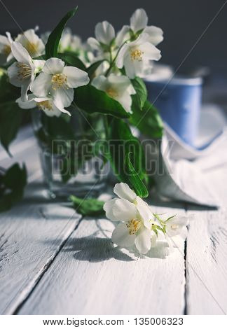Fresh jasmine flowers on table in daylight.