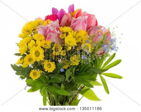 colorful beautiful bouquet of bright colorful fringed tulips forget-me-and yellow chrysanthemums on a white background isolated