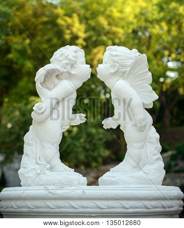 A pair of white angel kisses in the garden.