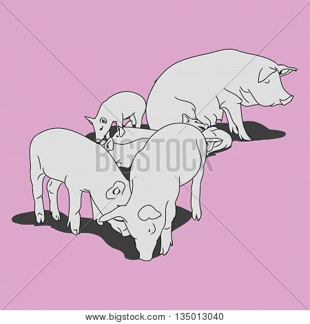 Graphic image of a pig and her piglets. Outline drawing of a pig on a pink background. Vector illustration emblem
