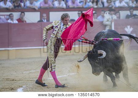 Cabra Spain - September 5 2010: The Spanish Bullfighter Jose Luis Moreno bullfighting with the crutch in the Bullring of Cabra Spain