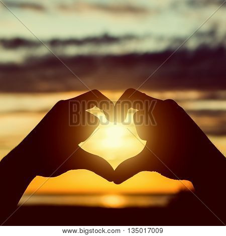 Toned Photo of the Hands in Heart Shape on the Sunset
