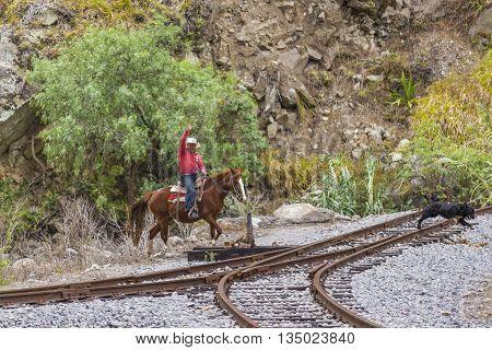 ALAUSI, ECUADOR, OCTOBER - 2015 - Latin cowbow riding a horse at nature landscape in the road of devil nose tour Aluasi Ecuador