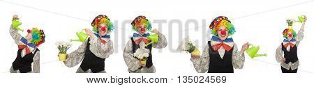 Female clown with watering can isolated on white