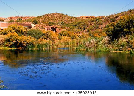 A calm river with luscious vegetation and sky blue water