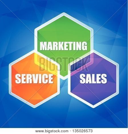 service, marketing, sales - business concept words in color hexagons over blue background, flat design, vector