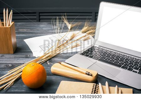 Creative designer desktop with blank white laptop screen stationery orange wheat spikes and construction sketch. Mock up
