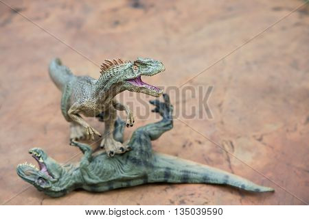 allosaurus stands and tyrannosaurus lays on rock