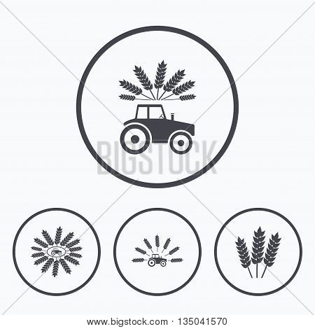 Tractor icons. Wreath of Wheat corn signs. Agricultural industry transport symbols. Icons in circles.