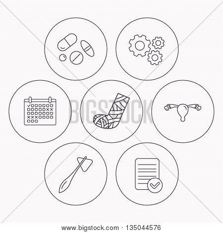 Hammer, broken leg and medical pills icons. Uterus and ovary linear sign. Check file, calendar and cogwheel icons. Vector