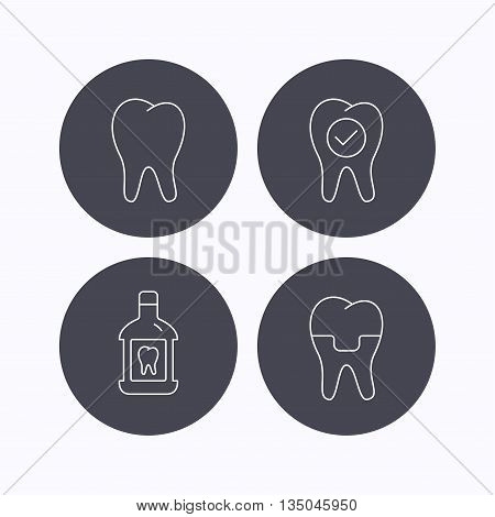 Tooth, dental crown and mouthwash icons. Check teeth linear sign. Flat icons in circle buttons on white background. Vector