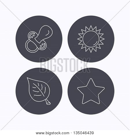 Leaf, star and sun icons. Pacifier linear sign. Flat icons in circle buttons on white background. Vector
