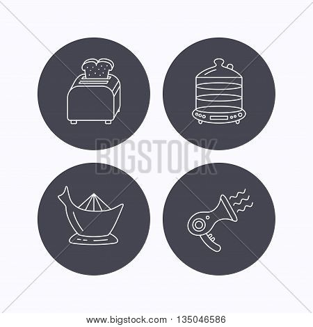 Steamer, hairdryer and toaster icons. Juicer linear signs. Flat icons in circle buttons on white background. Vector