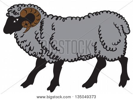 Illustration of a big ram on white background