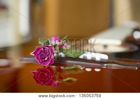 Dried red rose lays on the guitar