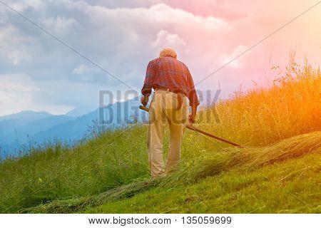 Farmer Hand Mower For Hay