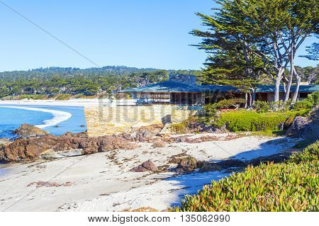 Beach. Carmel, California
