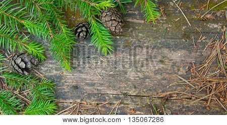old table in the wood, a surface erase weather, on a table coniferous branches and three small cone lie, coniferous needles are scattered on all surface