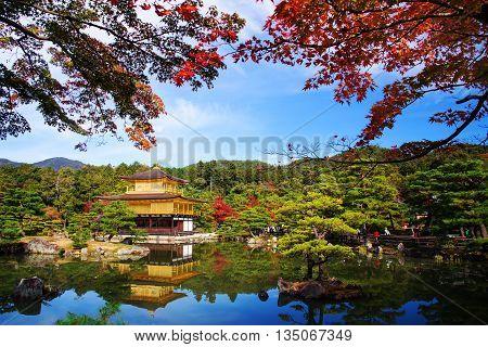 Golden Pavilion At Autumn, Kyoto