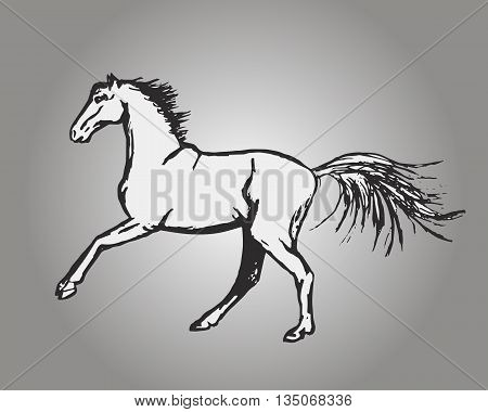 Graphic image of a horse on a gray background. Abstract illustration vector