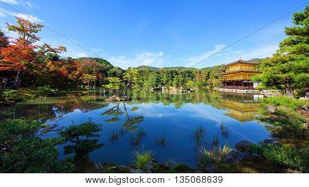 Kinkakuji Temple At Fall, Kyoto