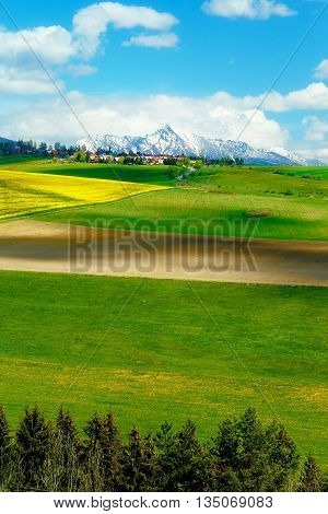 Beautiful landscape green and yellow meadow with field and snow mountain and village. Slovakia Central Europe region Liptov Mountain High Tatry
